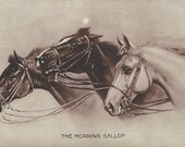 The Morning Gallop - Antique 1900s Sheahan's Horse Art Famous Picture Postcard