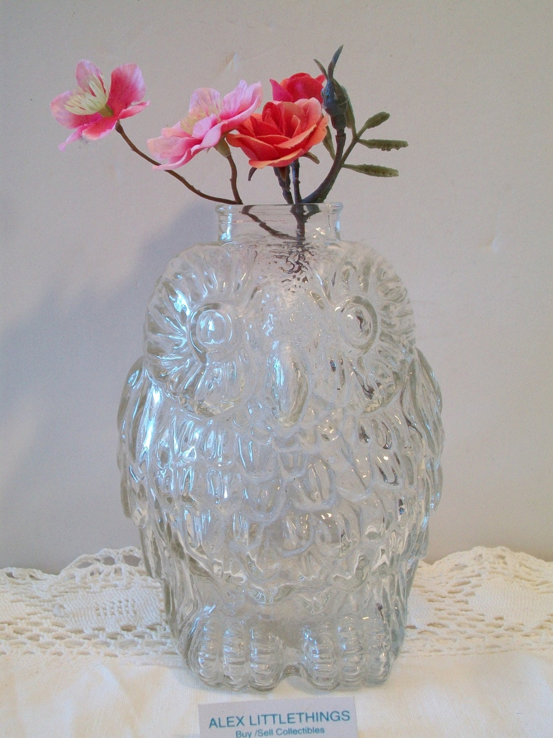 Retro wise old owl clear glass bank - Wise old owl glass bank ...