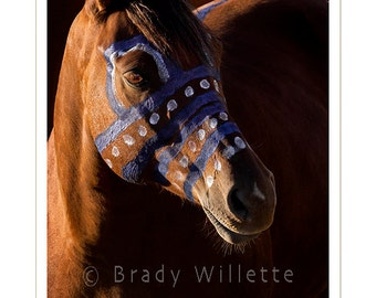 Poster of Blue Hail Storm - Lakota War Pony Portrait
