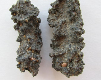 FULGURITE Lightning Strikes Sand 2 Pc. Lot - Lightning Fused Glass Tube - Sahara Desert Fulgurites - Petrified Lightning