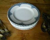 9 pc Terre de Fer Faience Blue and White Plates Andrinople St Armand Ironstone