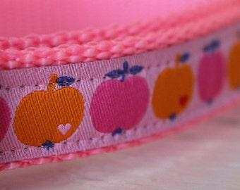 Pink Apples Dog Collar/Pet Collar/Fruit/Orange/Adjustable