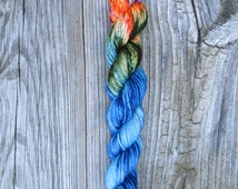 I Want A Pony!- Oasis Fingering Sock Hand dyed Yarn Mini Skein - Ready to ship 92 yards 20 grams SW Merino / Nylon