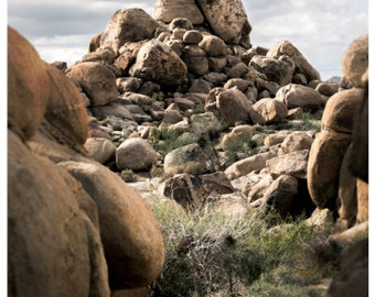 Joshua Tree, Boudlers Photo