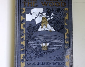 Antique Childrens Book The Well in the Wood Bert Leston Taylor First Edition 1904