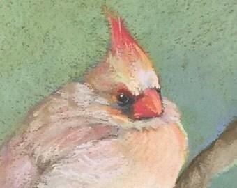 Original Painting Cardinal Female Pastel ArtEqualsJoy