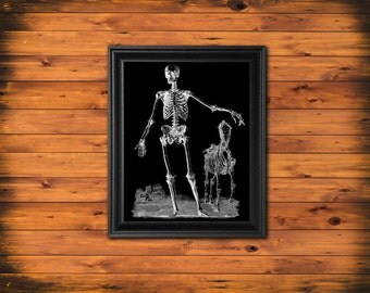 Human Skeleton Art Print, Human and Horse Skeleton, Halloween Wall Art, Black and White Art Print, Skeleton BW1