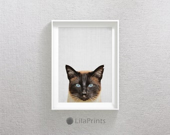 Nursery Cat Photo, Nursery Cat Photography, Cat Photo Prints, Cat Photo Art, Cat Photo Wall Art, Cat Fine Art Photography, Cat Art Prints