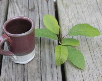 Petite Hand-made Ceramic Mug