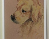 Golden Retriever Dog Art Note Cards By Cori Solomon
