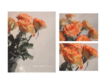 Coral Roses Photo Print Set, Floral Photography, Flower Still Life, Home Decor Wall Art Decor Livingroom Bedroom Bathroom Decor, Orange Gray