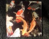 """Glass Tile or Coaster - Koi 4.25"""" x 4.25"""""""