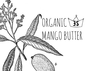 Organic Mango Butter   Organic Body Butter   Natural Moisturizer