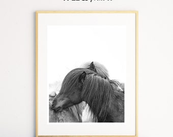 Horse Print, Horse Hug Wall Art, Horse Decor, Scandinavian Modern, Black White Wall Art, Wall Art Prints, Wild Print Co