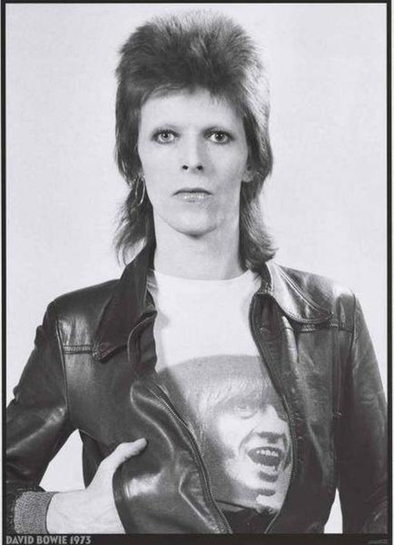 david bowie aladdin sane era - photo #7