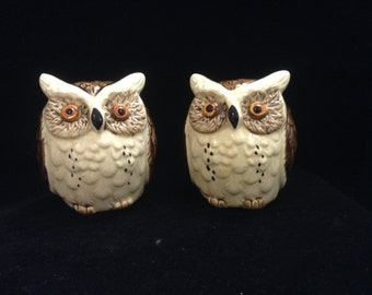 Spotted Owl salt and pepper shakers
