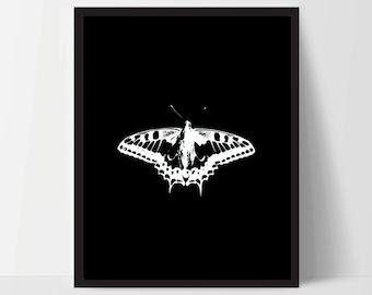 Butterfly Black White, Printable, Wall Art, Artwork, Home Decor, Modern Print, Print Art, Nature Art, Color, Decorations, Digital Print