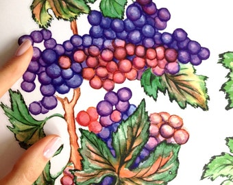 Set Of 4 Grape Wall Decals   Juicy Grape Clusters Decals   Grape Kitchen  Decor