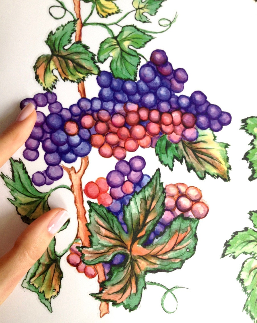 Juicy Grape Clusters Decals Grape Kitchen Decor Set Of 4