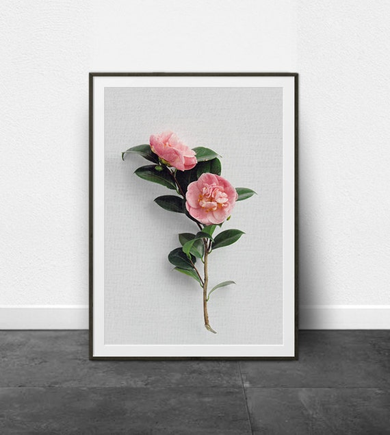 Wall Art Prints Download : Botanical print wall art prints printable digital download
