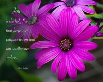 Joy is the Holy Fire that keeps our purpose warm and our intelligence aglow. Quote from Helen Keller