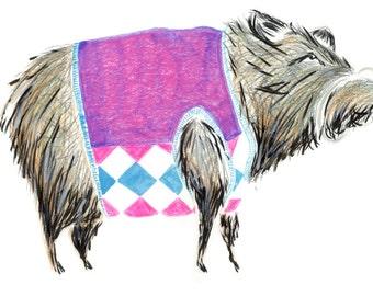 Preppy Boar