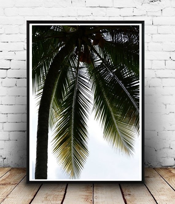 tropical art palm tree printable art palm tree by honeytreeprints. Black Bedroom Furniture Sets. Home Design Ideas