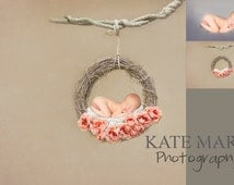 Whimsical Rusty Pink Floral Dreamcatcher Newborn Photography Digital Backdrop