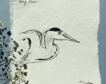Grey Heron Sketch