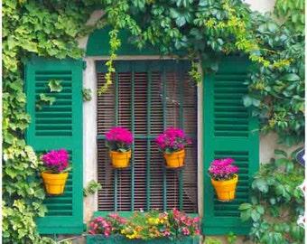 Paris Photography, French Decor, Fine Art Photograph, Paris Flowers, Window Photography, Paris Wall Art, French Wall Decor, flower print