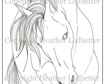 Mustang Horse Coloring Page (Digital Download)