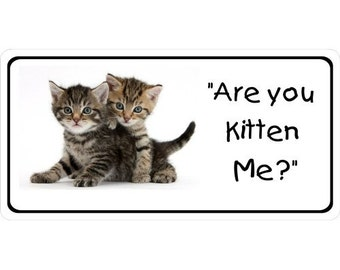 Are you Kitten Me Photo License Plate - LPO2390