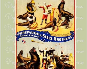 Circus poster, Forepaugh & Sells, Animal Circus, Carnival Poster, Sea lion Act, Seals Circus Act, Circus Wall Art, Vintage Circus Poster