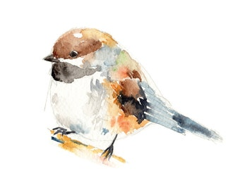 Boreal Chickadee Print - bird watercolor painting