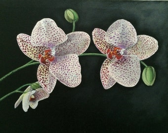 Orchid original acrylic painting
