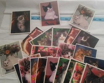 Vintage Lot of 23 Very Cute Kitten Postcards-Cat-Scrapbook-Paper Crafts