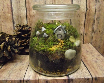 The Perfect Size Live Moss Terrarium with Tiny Raku fired clay house Glow in the Dark mushrooms and tiny lantern- Handmade By Gypsy Raku