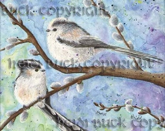 Long Tailed Tits Watercolour Print