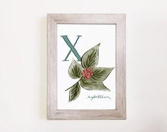 "X is for Xylosteum - Botanical Alphabet Print 5""x7"" // Monogram wall print, Personalized Monogram, monogram print, Custom monogram, X print"