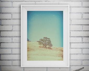 Tree Art, Rural Art, Tree Photography, Tree Art Print, Nature Print, Rural Print, Autumn Decor, Fall Decor, Printable Art, Digital Download