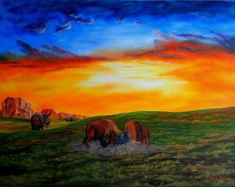 Buffalo Sunrise