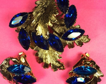 Earring and Brooch Set/Deep Blue Stones