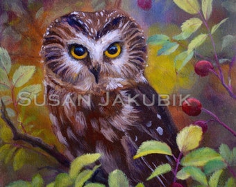 "Saw Whet Owl Gallery Wrapped Canvas Print, Owl Painting, Owl Art, Giclee' Print on Gallery Wrapped Canvas,  6""x 6"", Northern Saw Whet Owl"