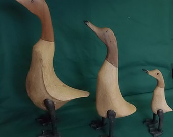 Wooden Duck family