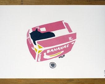 Art print my cat in a box - A3 poster