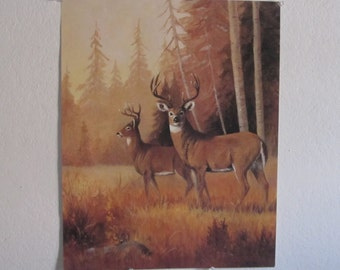 Pair Buck Deer Lithograph