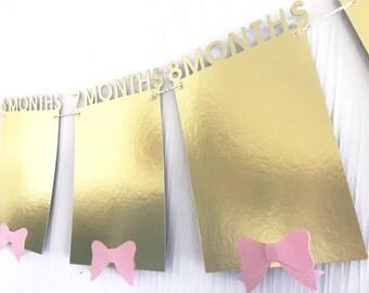 12 month photo banner.  1-12 month photos.  Photo banner   Baby's first birthday banner.   First birthday decor.