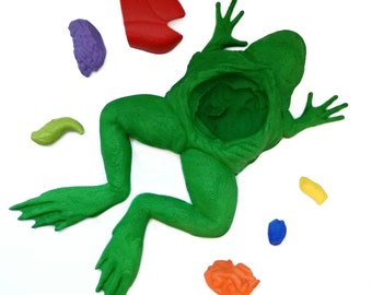 3D printed educational frog