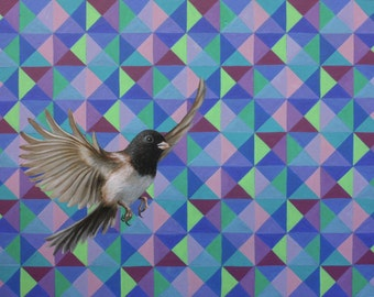 """Limited Edition Giclee print of """"Junco hyemalis"""""""
