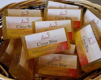 Citrus Bliss Body Bar